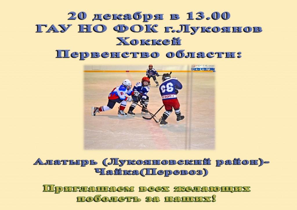 хоккей20.12
